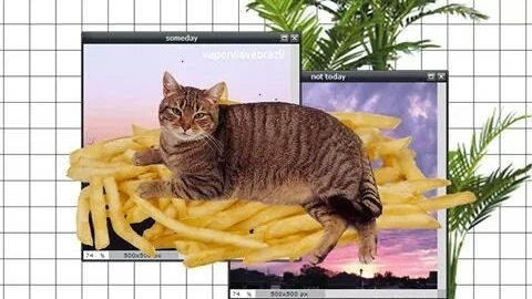 Šakom teen maca