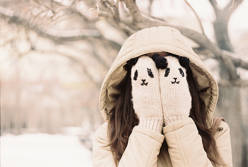 Winter Tumblr Pictures theme by sextlo...