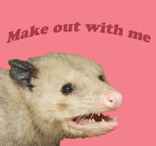 """valentine day memes grumpy cat - ʕ """"  ̄ Ĺ̯  ̄ """" ʔ got any questions"""