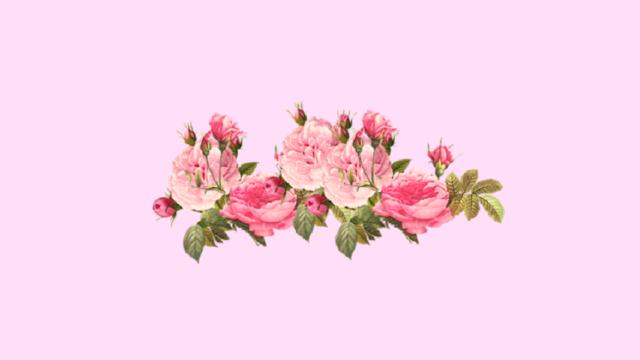 Цветы тумблер пнг