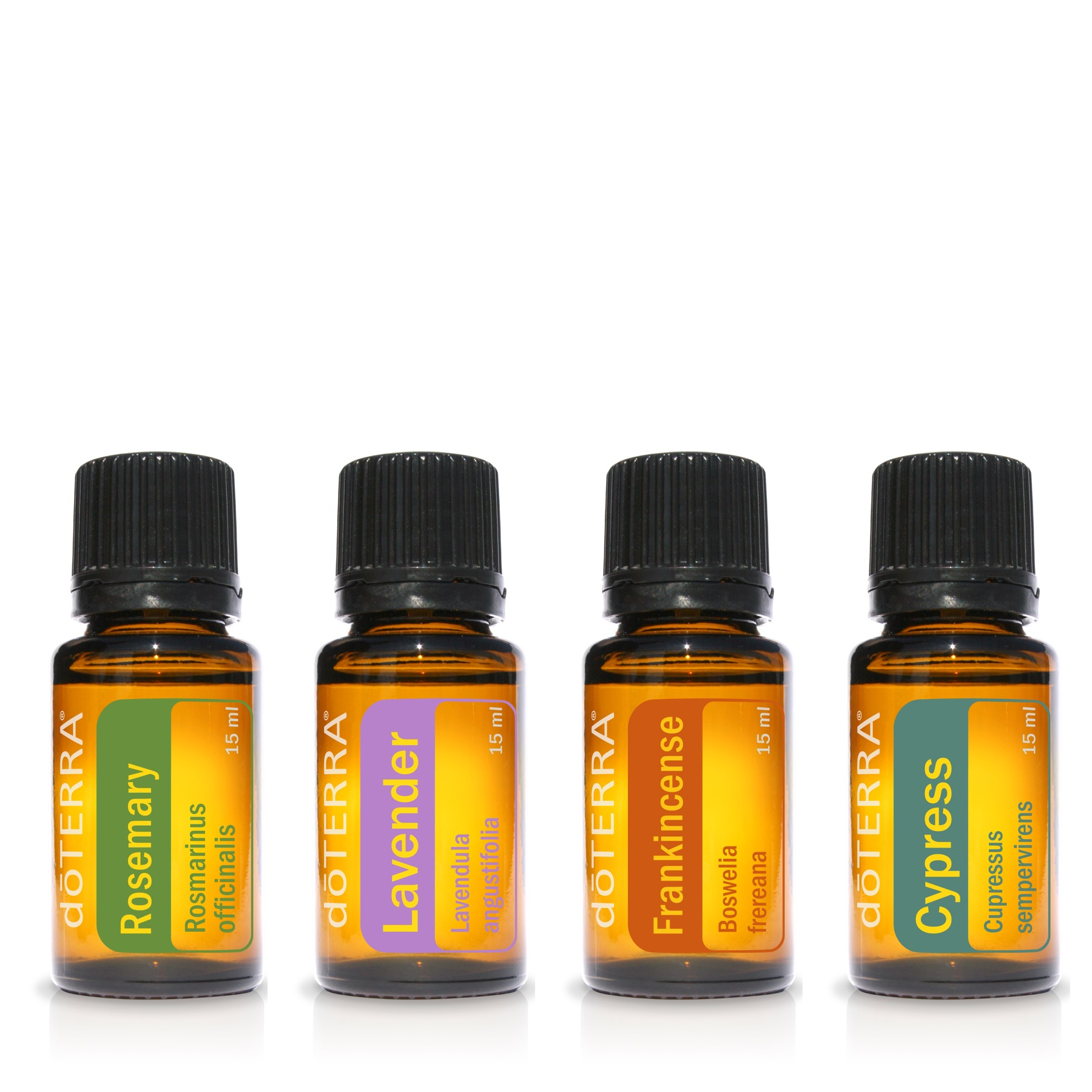 Holistic Living + Essential Oils