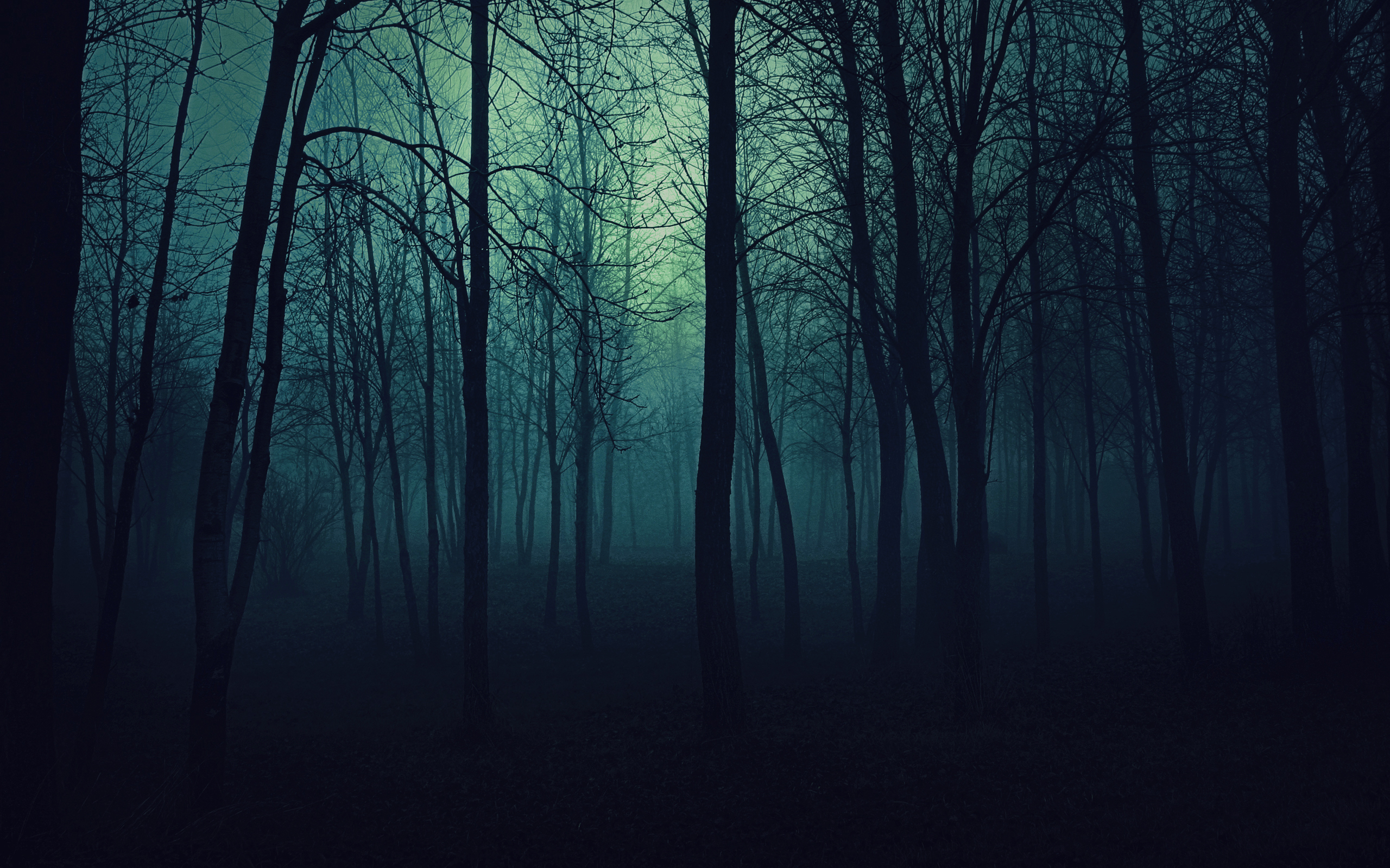 about meGothic Forest Backgrounds
