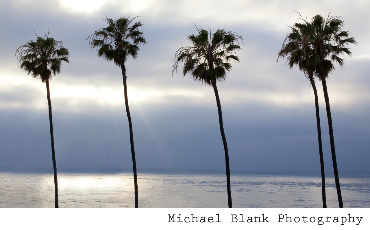 Michael Blank Photography