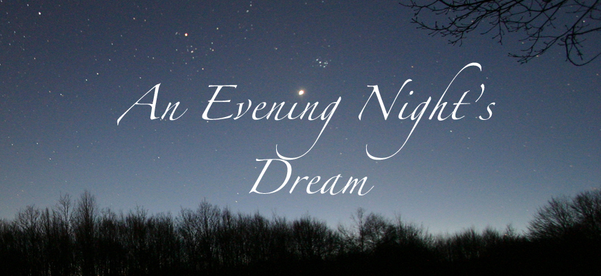 An Evening Night's Dream