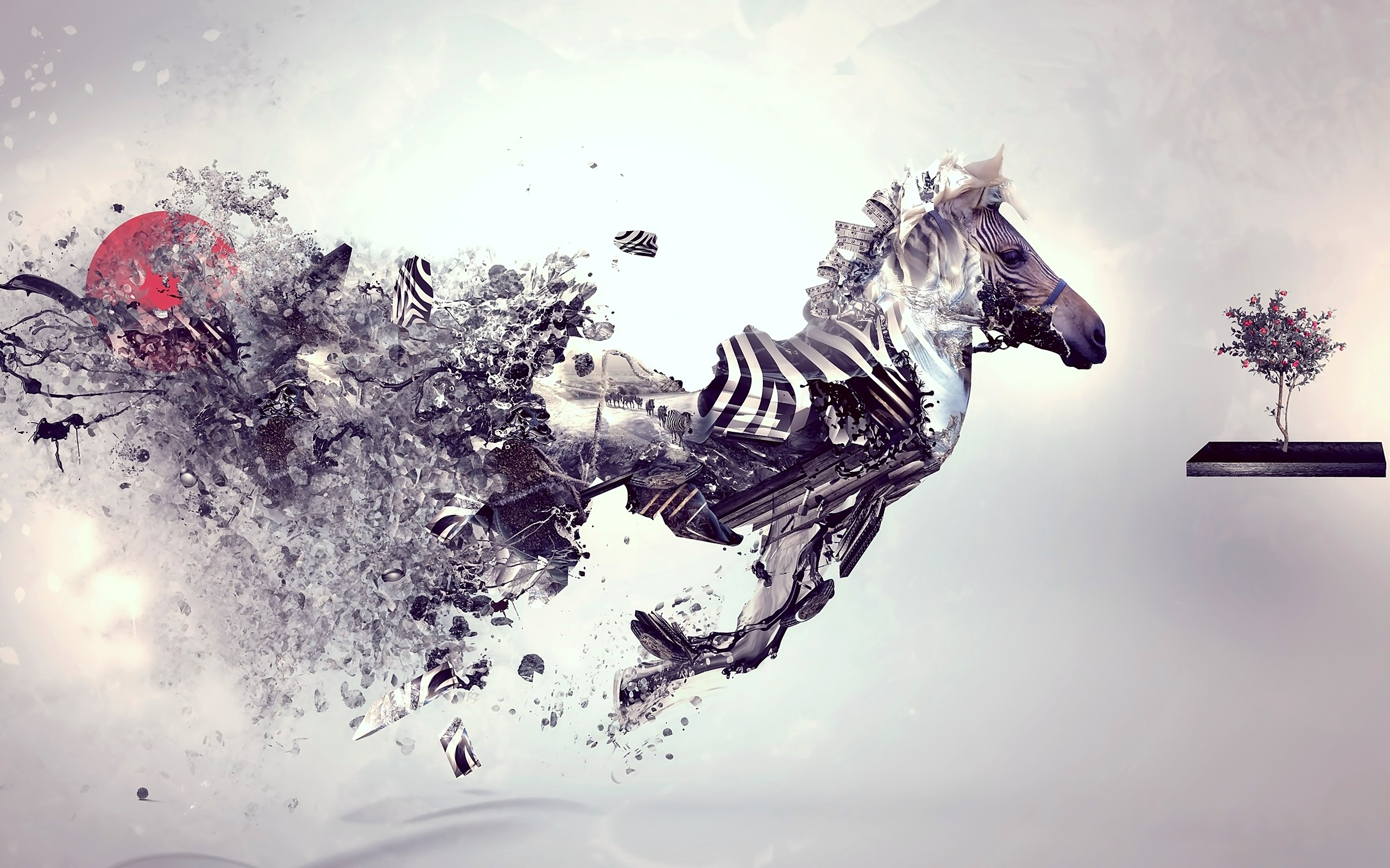Amazing Wallpaper Horse Abstract - tumblr_static_zebra  Photograph_80713.jpg
