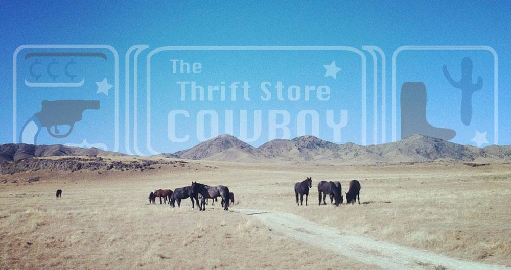 thethriftstorecowboy.