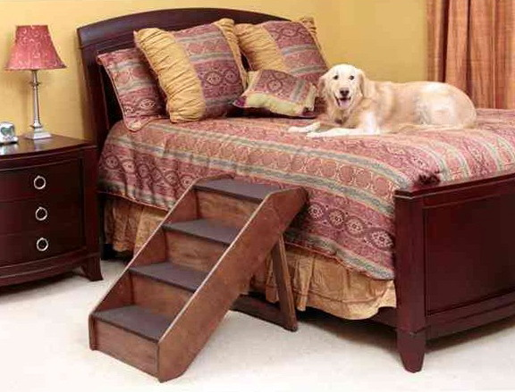 dog and bed | tumblr