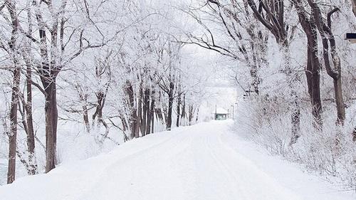 Résultats de recherche d'images pour «tumblr snow»
