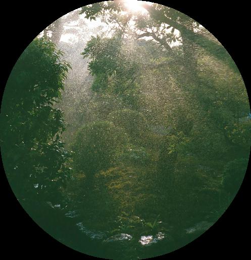 Výsledok vyhľadávania obrázkov pre dopyt tumblr png nature