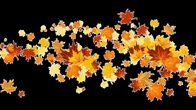 Risultati immagini per autumn png gif tumblr