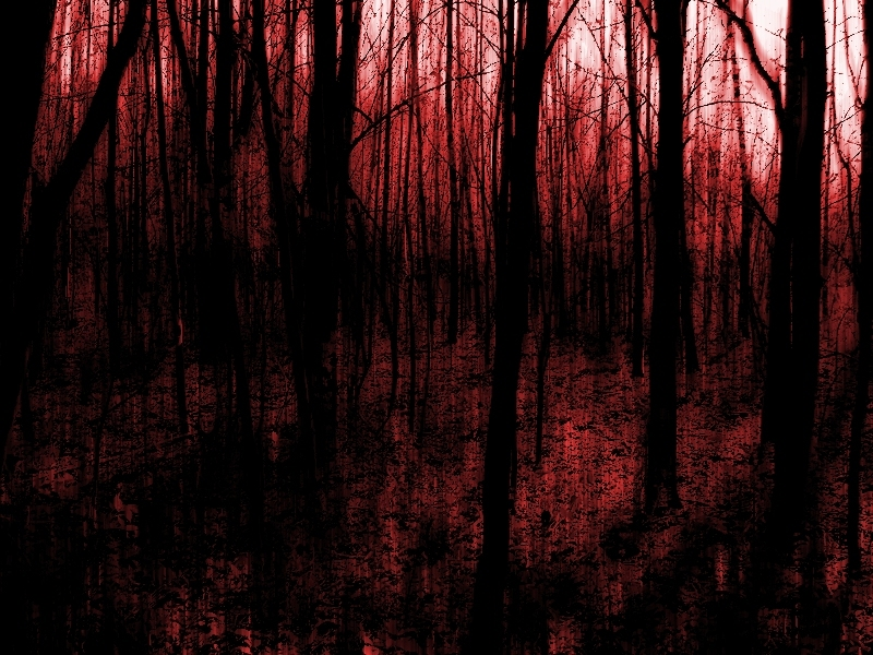 http://static.tumblr.com/781edab0b4aedf31093772979cb4c42a/7vckmcm/8fbmhpkmc/tumblr_static_bloody-forest-hell-red.jpg
