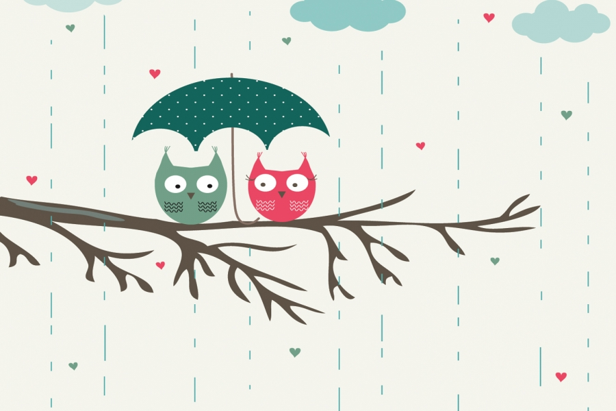 cute owl backgrounds tumblr - photo #26
