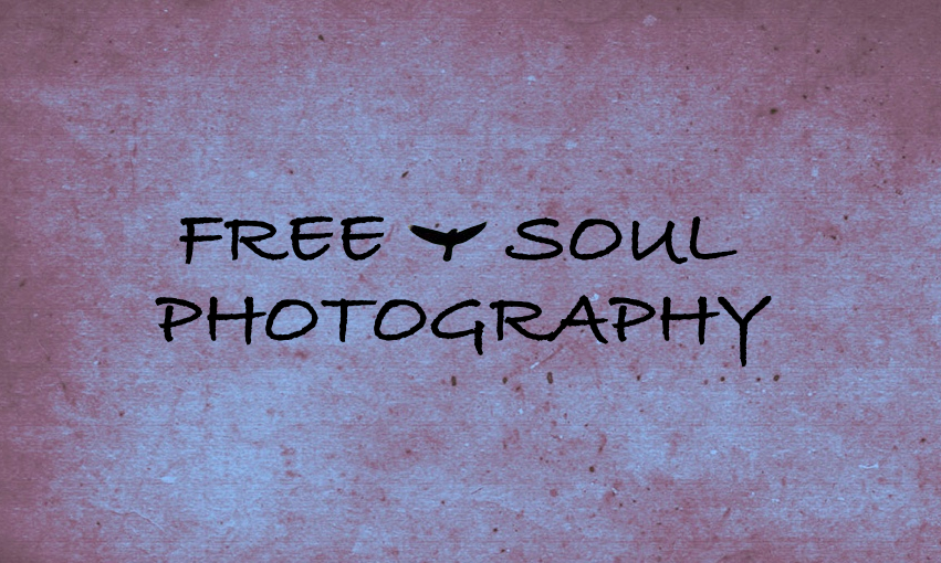 Free ~ Soul ~ Photography