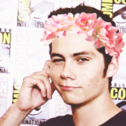 Daniel sharman tumblr flower crown