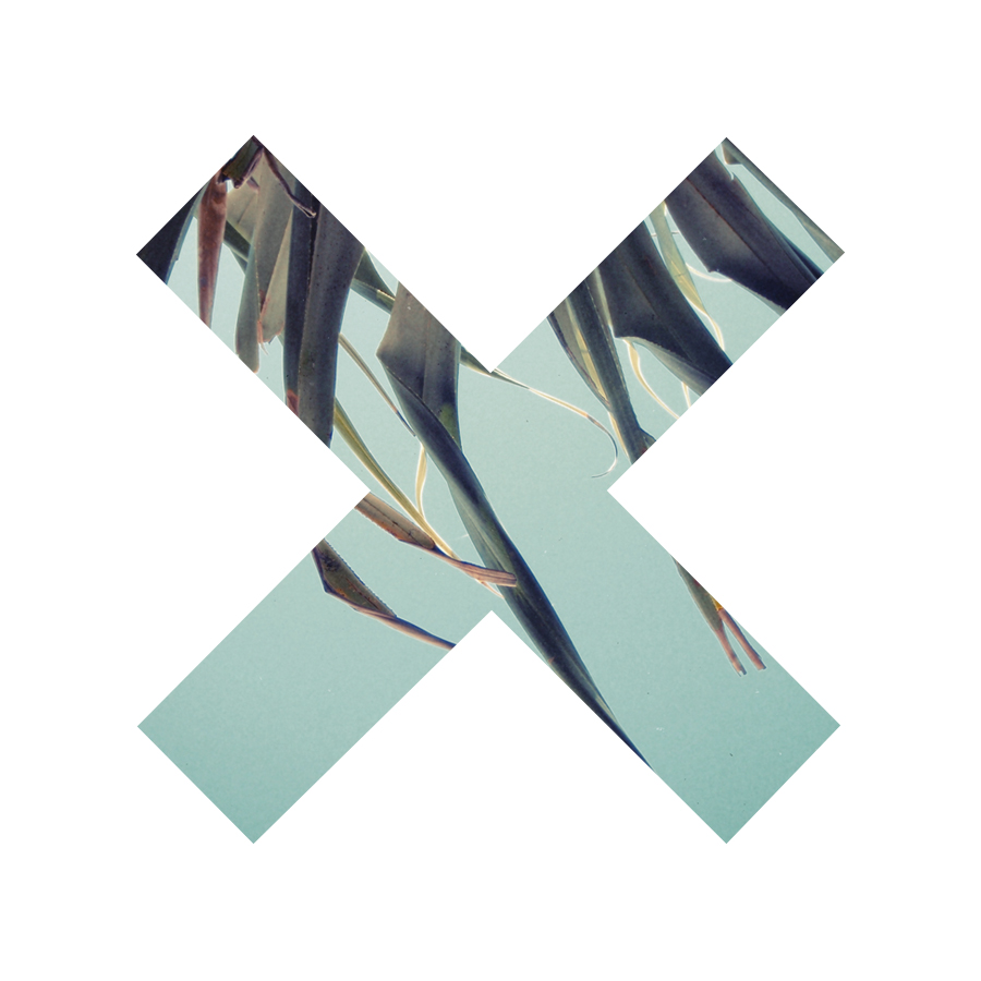 the xx network