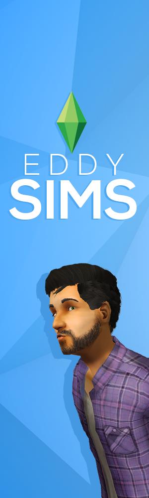 sims   term paper