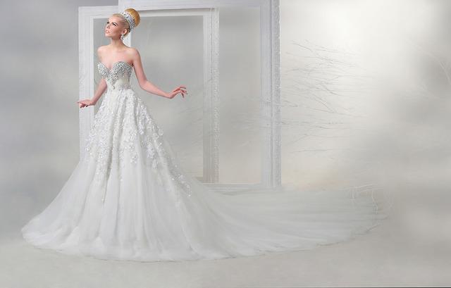 Haute couture wedding dresses tumblr long