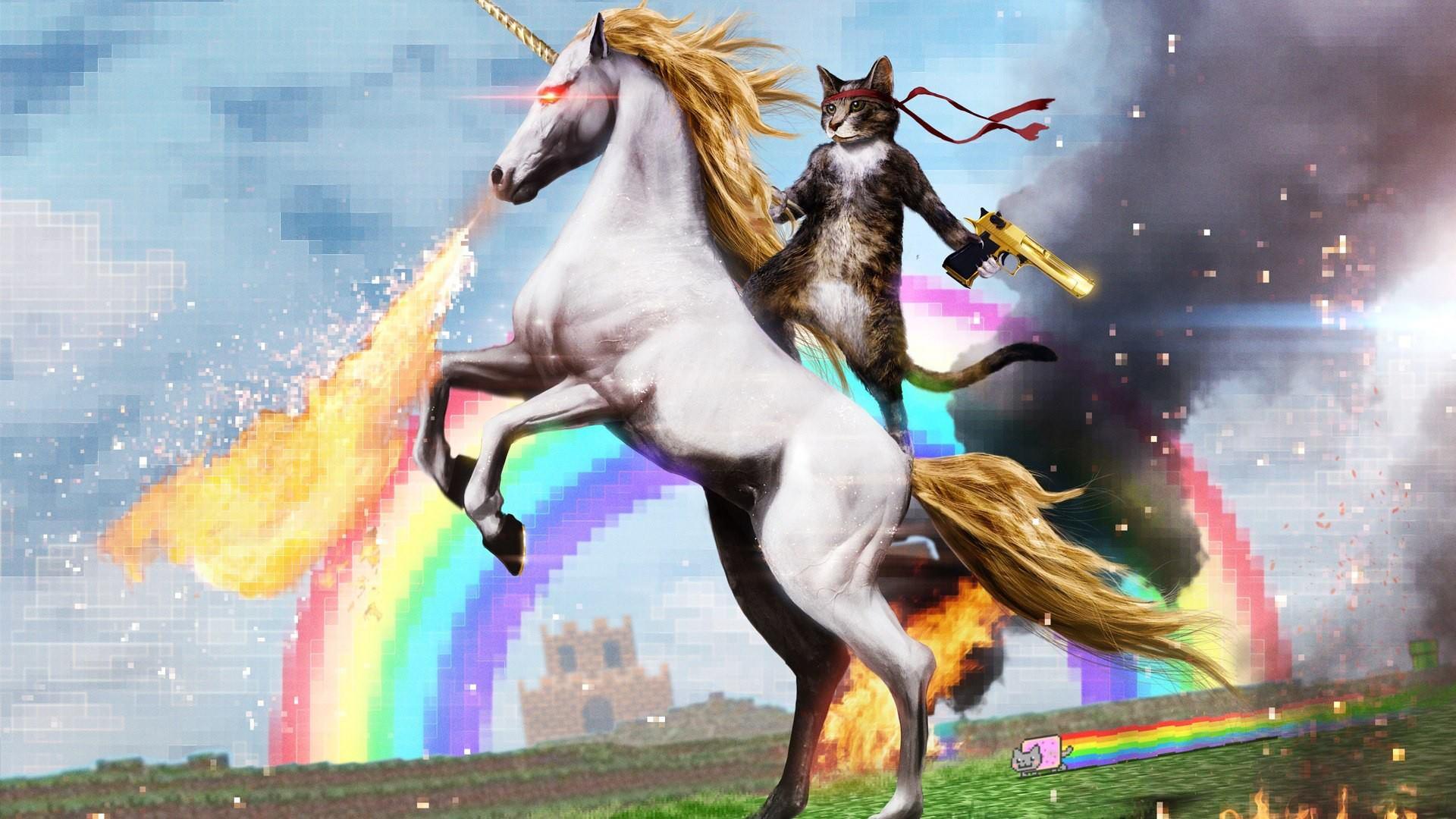 Simple Wallpaper Horse Laptop - tumblr_static_trippy_kitty  Snapshot_626863.jpg