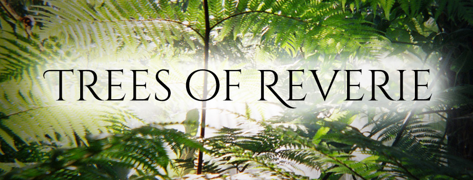 Trees of Reverie: These Books Were Once Trees