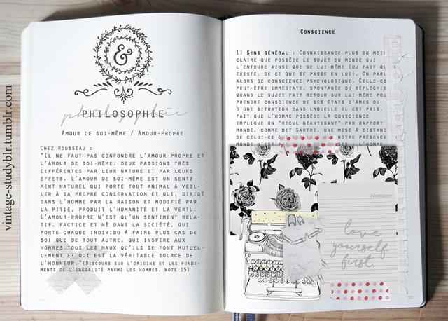 Image result for studyblr tumblr