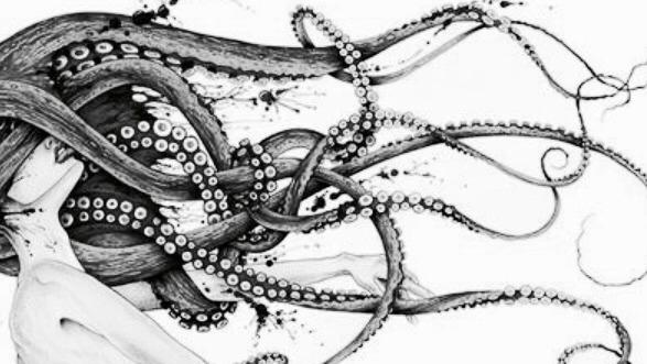 pale octopus Tumblr