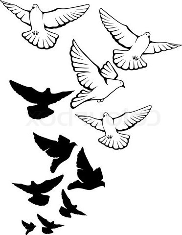 Pigeon Clip Art Pictures to Pin on Pinterest - TattoosKid