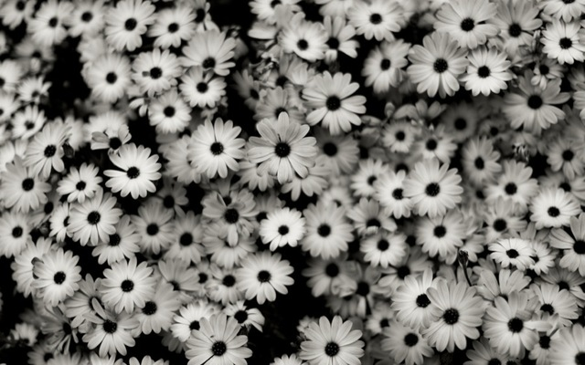 черно белые тамблер картинки
