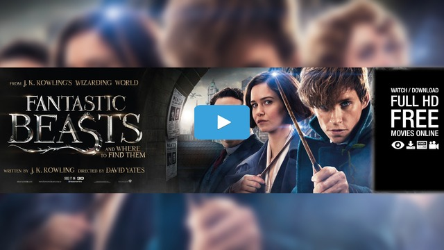 fantastic beasts and where to find them online tumblr