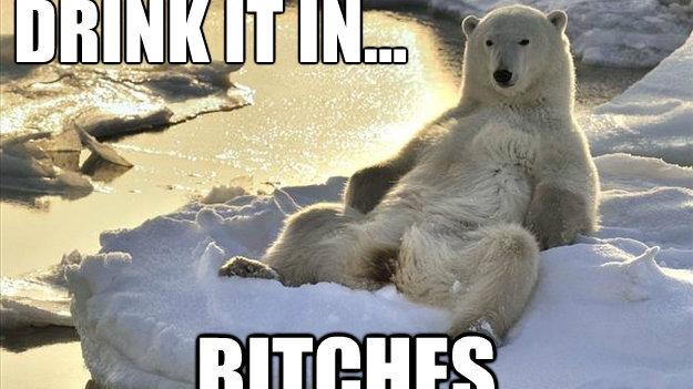 polar bears man tumblr