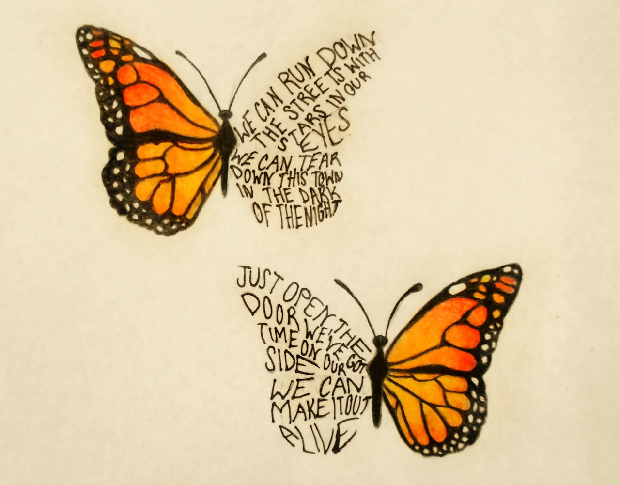 This is an image of Dashing Butterfly Drawing Tumblr