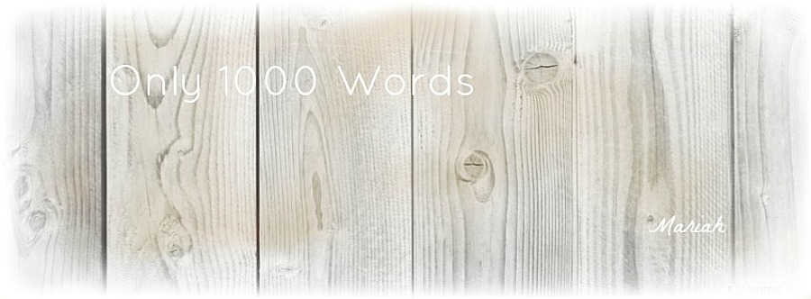 Only 1000 Words
