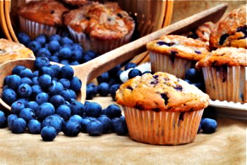 Low fat blueberry recipes
