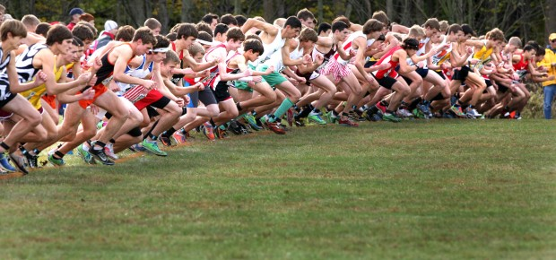 Image result for cross country starting line
