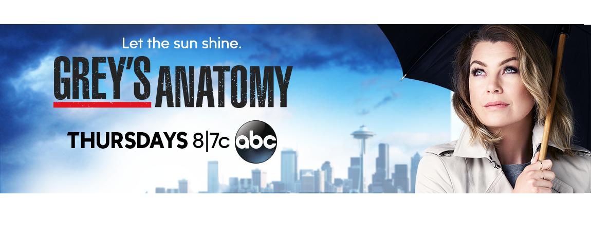 La historia de Meredith Grey se renueva en la temporada 12 de Grey's Anatomy