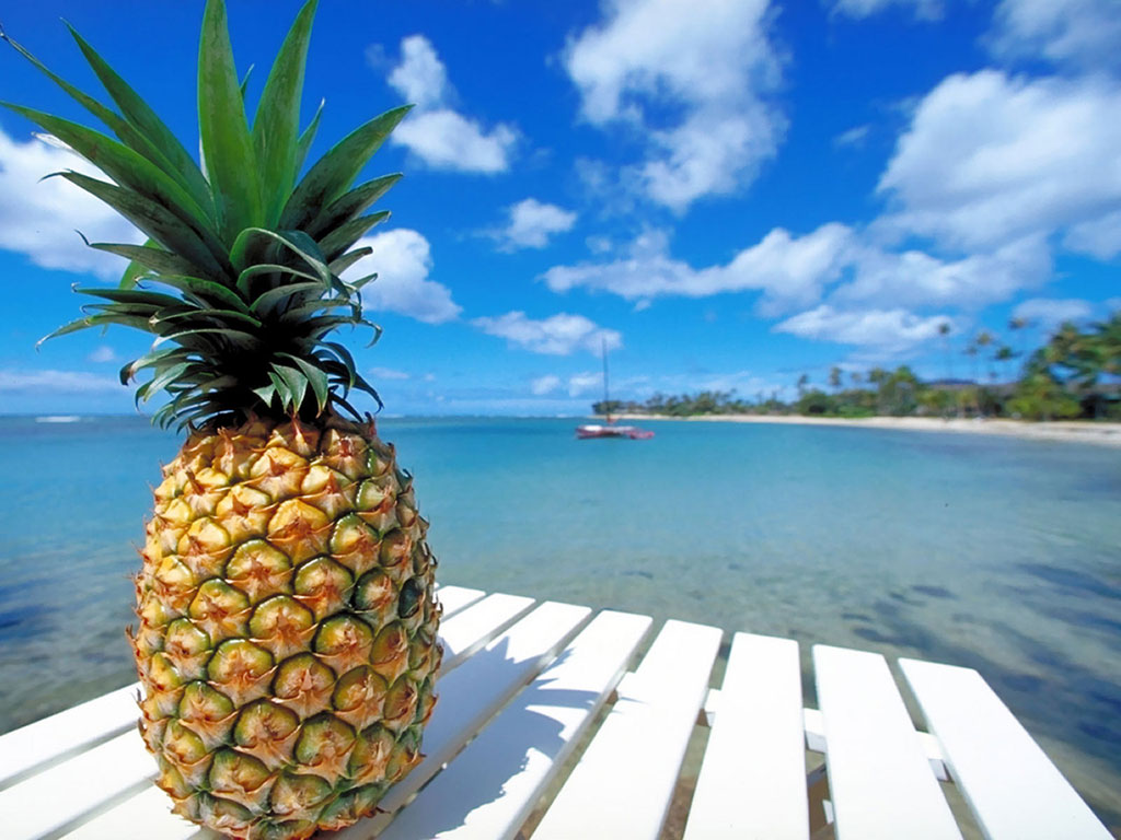http://static.tumblr.com/9f51b44d54bc6a3b702bded8fd132432/aqd6bb6/3nRn1bgaa/tumblr_static_pineapple-beach.jpg