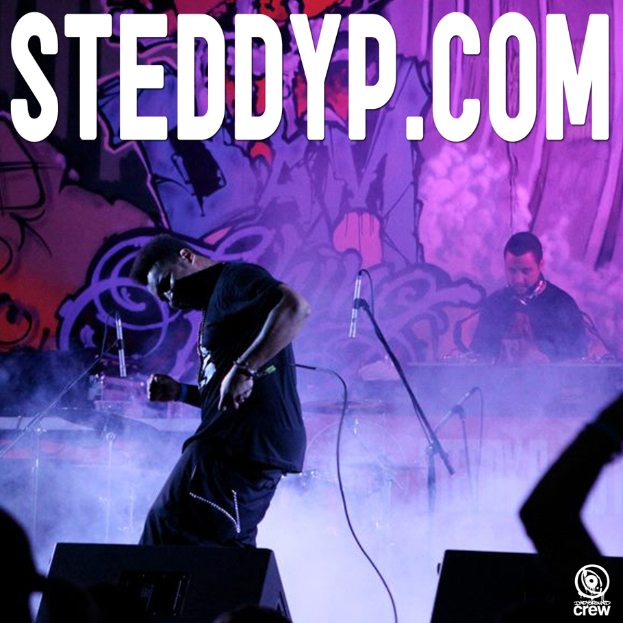 Official STEDDY P Website
