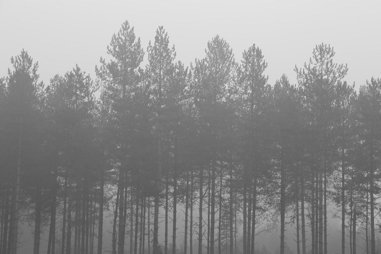 Hoontoidly Sad Black And White Tumblr Backgrounds Images