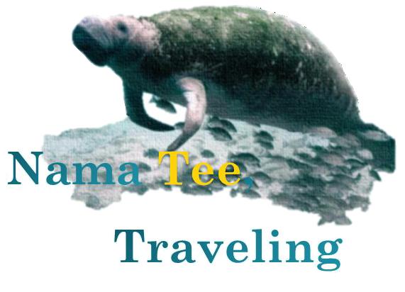 Nama Tee, Traveling