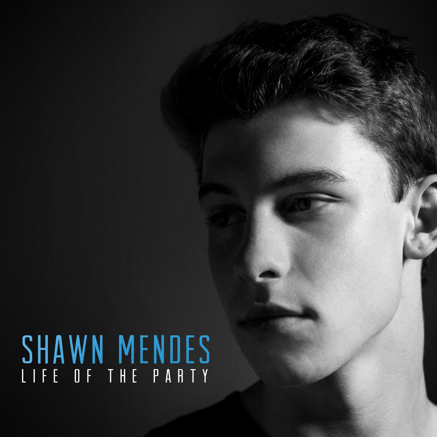 Life Of The Party Guitar Chords Shawn Mendes