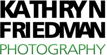 Kathryn Friedman Photography