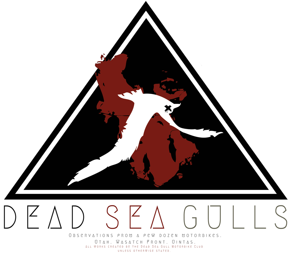 DEAD SEA GULLS