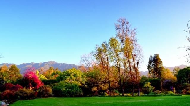 Los Angeles County Arboretum And Botanic Garden