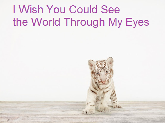 I Wish You Could See the World Through My Eyes