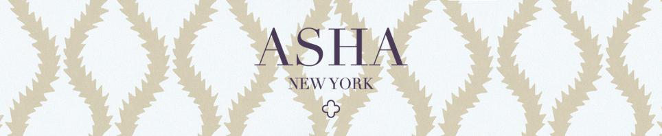 The Asha Blog