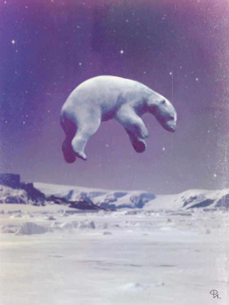 Astro Polar Bear