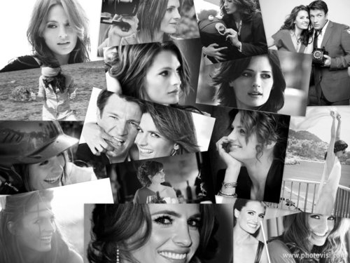 Happy 34th Birthday Stana Katic!
