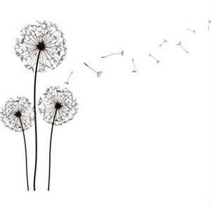 transparent dandelions flower flowers black and white art cute jpegTransparent Black And White Flowers Tumblr