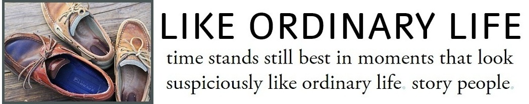 Like Ordinary Life