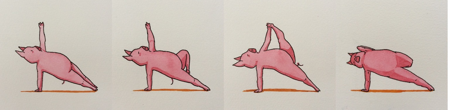 The Yoga Pig