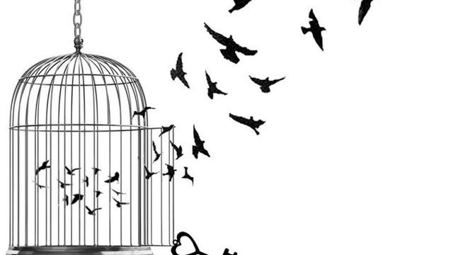 Gilded Birds Tumblr